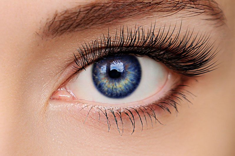 Fame International Day Spa & Hair Salon Eyelash Tinting Services